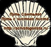ракушка лого История создания проекта